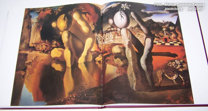 Salvador Dali - book The Surrealist Angel
